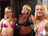 Dv� lesbi�ky si daj or�ln� rychlovku - freevideo
