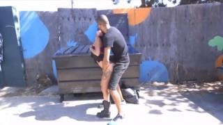 Mrdačka u popelnic - freevideo