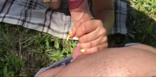 Šukačka ve vysoké trávě - freevideo