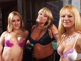 Dvě lesbičky si daj orální rychlovku - freevideo